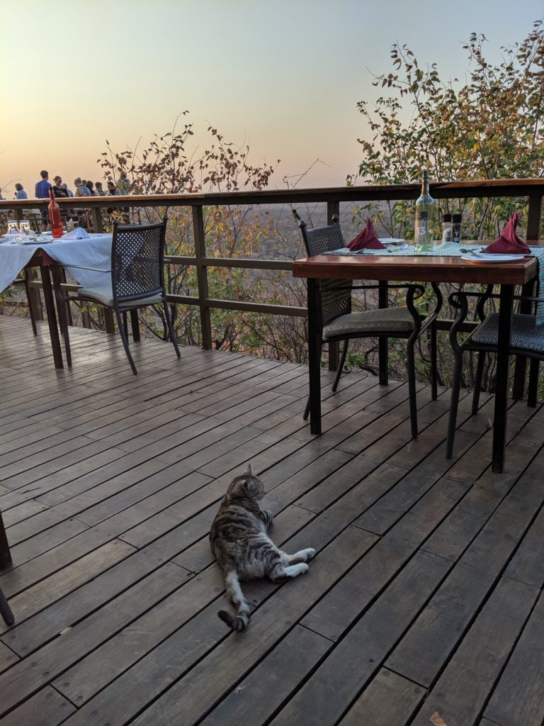 Etosha Safari Lodge Dining